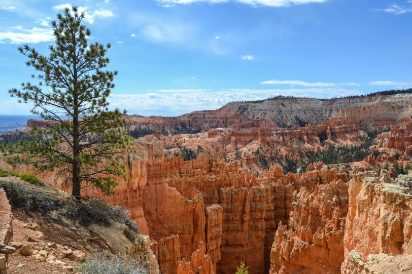 bryce-canyon-national-park_27153135140_o