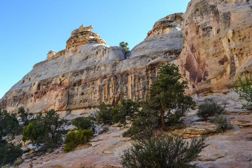 capitol-reef-national-park_26820684324_o