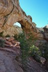 capitol-reef-national-park_26820684804_o