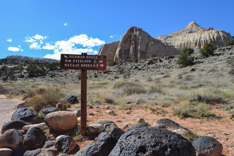 capitol-reef-national-park_26820686234_o