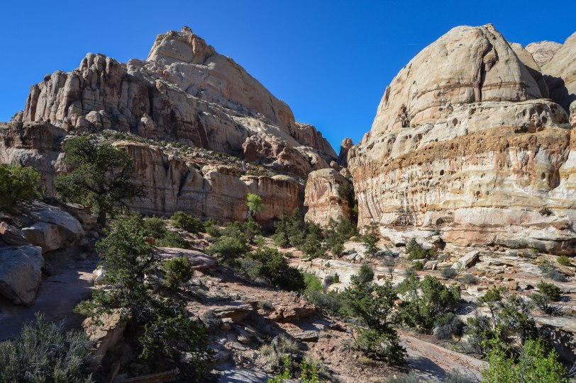 capitol-reef-national-park_27429584535_o